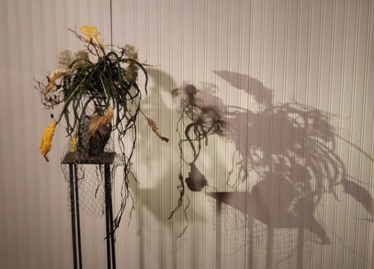 Experimental expressions with plant materials